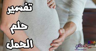 بالصور تفسير الحمل في الحلم , ما هو تفسير الحمل فى المنام 10047 2 310x165