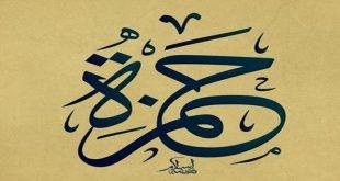 بالصور صور لاسم حمزه , تعرف على معنى اسم حمزة وصفات حامل الاسم 10958 11 310x165