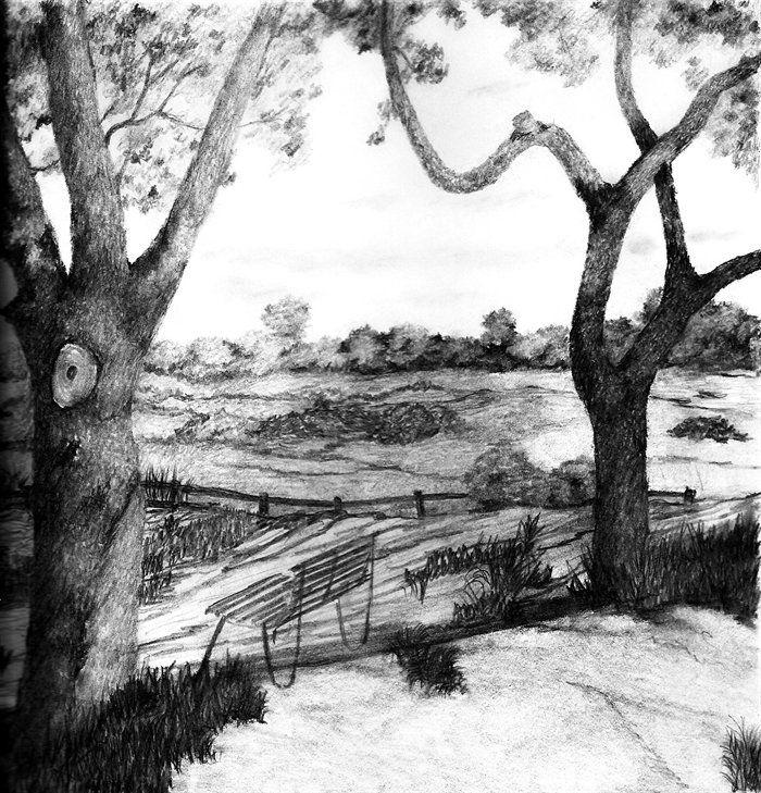 بالصور رسم طبيعة بالرصاص , اجمل الرسومات بالرصاص للمناظر الطبيعية 11011 6