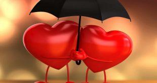 بالصور تعريف الحب الحقيقي , ماهو الحب 11085 2 310x165