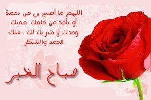بالصور رسائل صباح الخير حب , احلي رسائل صباحية 11116 12 310x205
