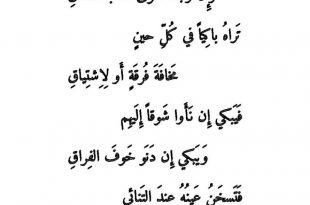 بالصور اجمل قصيدة غزل , اجمل قصائد الشعر في التغزل في الحبيبة 9651 14 310x205