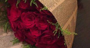 صورة صور بوكية ورد , اجمل الورود بالصور