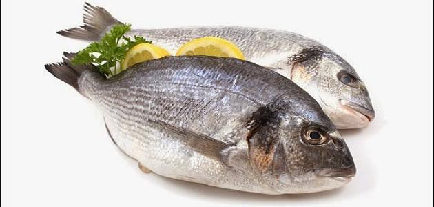 صورة فوائد الاسماك للانسان , السمك وفوائده العديد للجسم