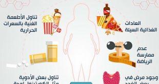 صور اسباب السمنة , تعرف علي ما يسبب الوزن الزائد
