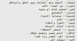 صور اسماء اولاد ومعانيها , معاني اسامي ولاد صغار