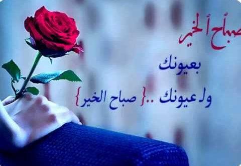 صور حبيبي صباح الخير فيس بوك , صباح الحب والجمال