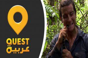 صور تردد قناة كويست عربية hd , برامج قناة كويست