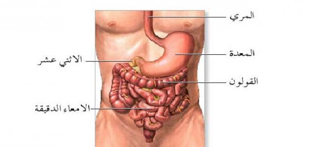 صورة علاج التهاب المعدة والامعاء , وصفات طبيعية لعلاج التهاب المعدة والامعاء