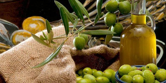 صور شراء الزيتون في المنام , تفسير حلم شراء الزيتون