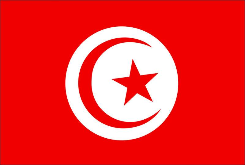 صورة صورة علم تونس , علم تونس بالصور