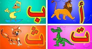 صور الحروف العربية مع الصور , صور حروف للاطفال