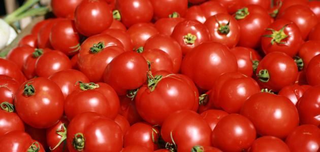 صور فوائد الطماطم , فائدة الطماطم ستجعلك تاكلها يوميا