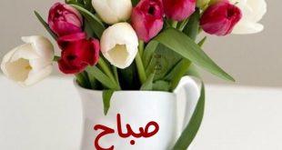 صورة صباح الخير والورد , رسائل صباحية خطيرة كلها حب