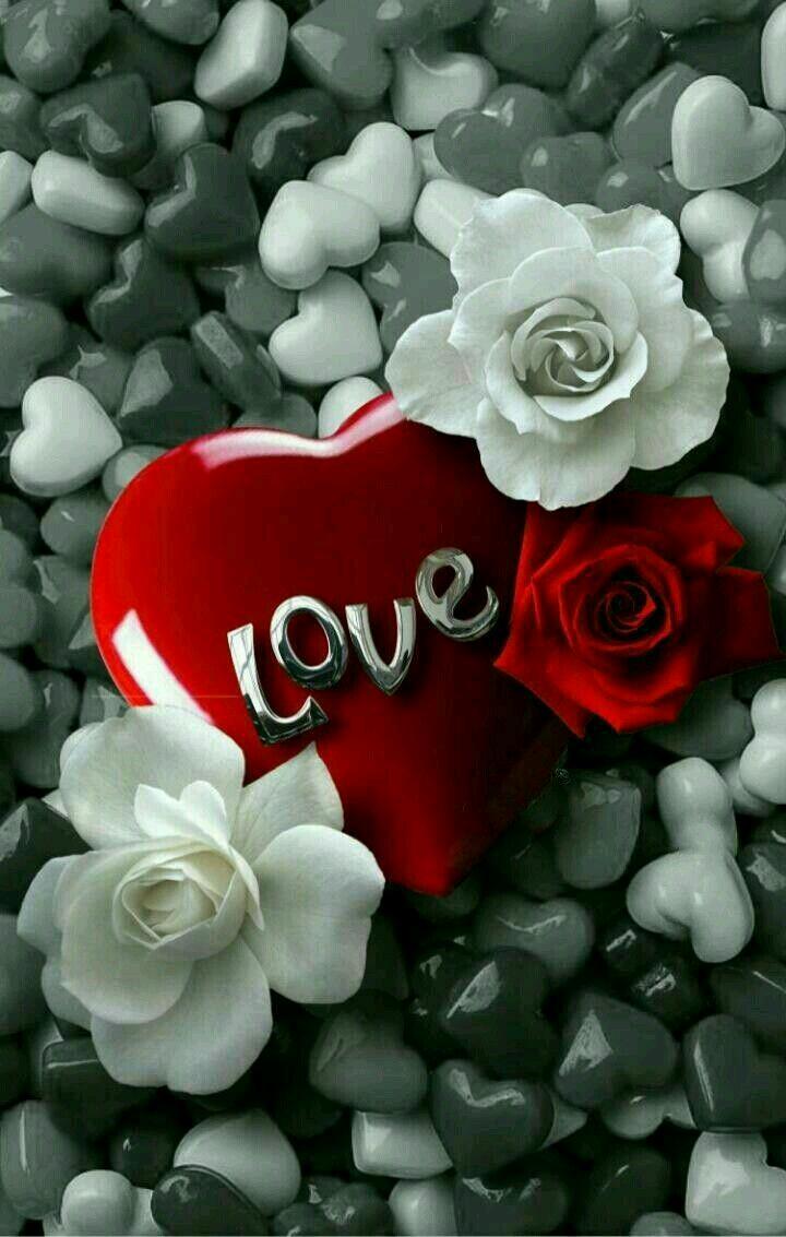 صورة اجمل صور رمنسيه , فاجئ حبيبتك برسائل عشق و حب