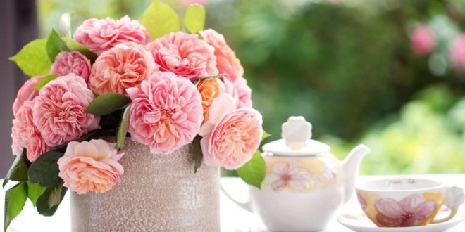 صور اجمل رسائل الصباح , صباح خير و بهجة و سعادة