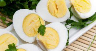 صورة البيض المسلوق والرجيم , فوائد البيض المسلوق في الرجيم