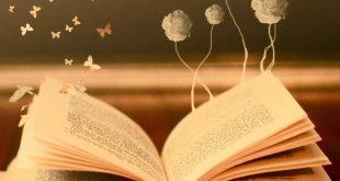 صورة روايات عربية رومانسية , ستعرف معنى الحب الحقيقي عند قراءة هذه الروايات