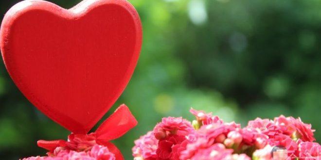 صورة اجمل حب رومانسي , كلمات جميلة و رقيقة عن الحب