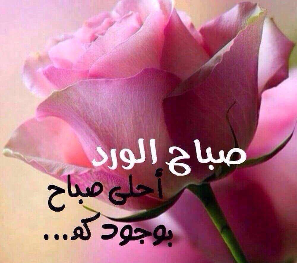صورة صورصباح الخير رومانسيه , احلى صور لصباح الخير للمخطوبين