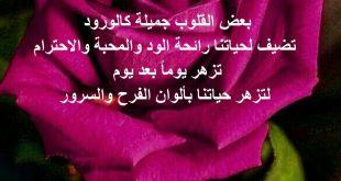 صورة خواطر عن الورد , اروع عبارات لغة الورد