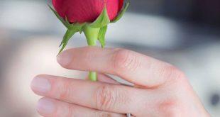 صورة صور جميلة للفيس بوك , صور جذابة قمة فى الروعة