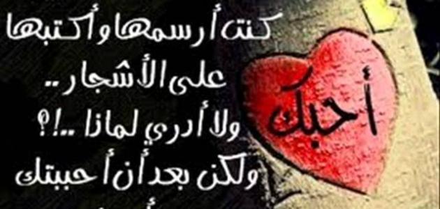 صورة عبارات حب وعشق , كلمات غاية فى الرومانسية والمشاعر الرائعة