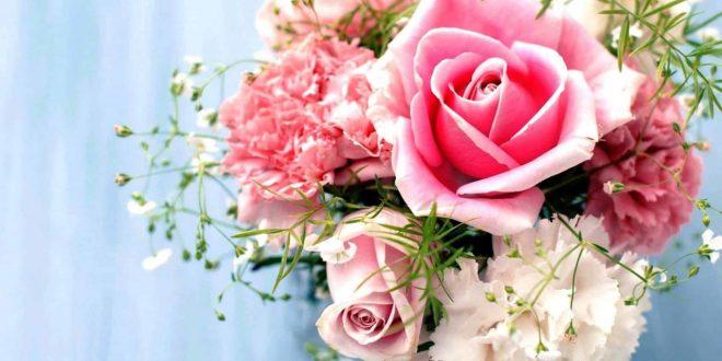 صورة صور ورد خلفيات , اجمل رمزيات الورود و الازهار