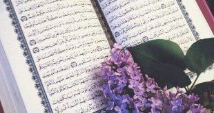 صورة ما هو القران الكريم , لن تترك القرآن بعد معرفته جيدا