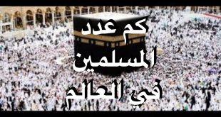 صورة كم عدد المسلمين في العالم، تعرف على الديانة الأكثر انتشارا حول العالم