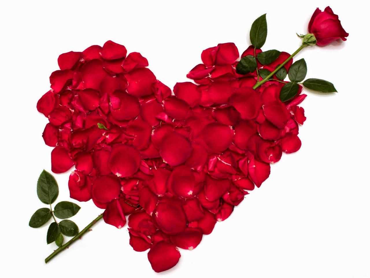 صورة اجمل رومانسيه , رسائل للحب و العشق و الغرام روووعة 667 4